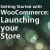 Launching your WooCommerce Store
