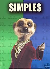 Simples Meerkat